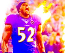 Ray Lewis NFL Super Bowl Champion