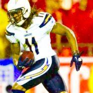 Signed NFL Champion Wide Receiver Legedu Naanee
